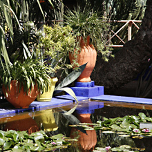 Marrakesch Dachterrassen - Jardin Majorelle