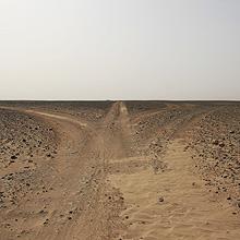 Wüstenfahrt - Entscheidungen